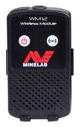 GPZ Wireless Module